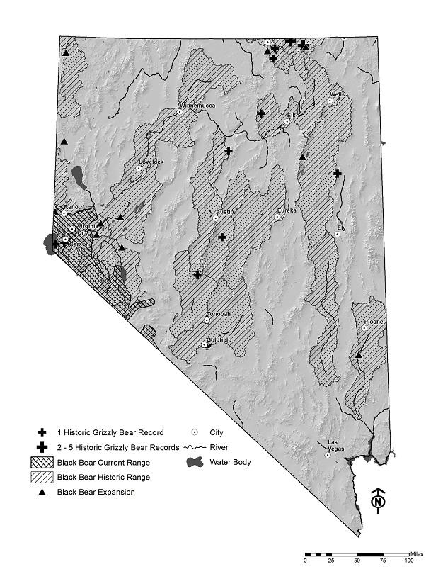 Map showing historic range for black bears